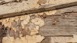 close up of peeling paint on weathered plywood of a shipwreck in Greece