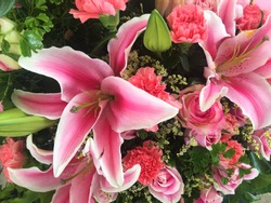 Close up of pink lily flowers around by roses, carnation flowers and green leaves