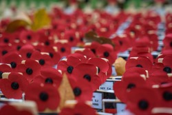 Close up of Poppy's for Remembrance Day