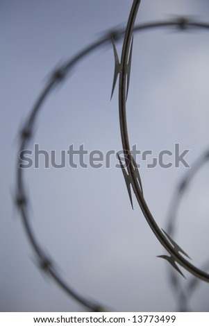 Close up of razor wire, with a shallow depth of field (focus)