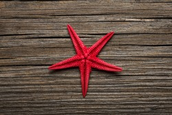 Close-up of red starfish on old wooden board. View from top.