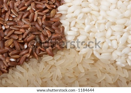 Close-up of rice (macro, three colors)