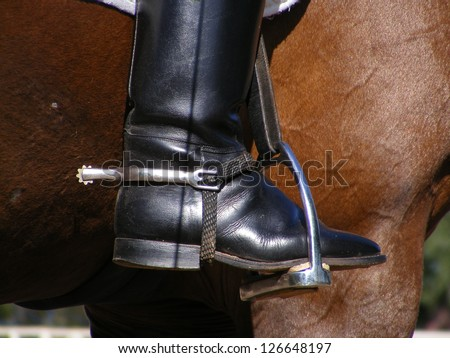 Close up of rider leg with disk spur on it on brown horse