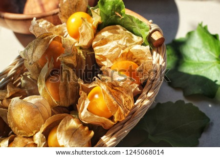 close up of ripe yellow cape gooseberry with green leaf in wicker basket