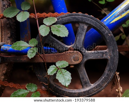 close up of rustic chain gears and parts of an old aged vintage abandoned blue bicycle leaving outdoor with green leaves young creeping plants growing on it #193379588