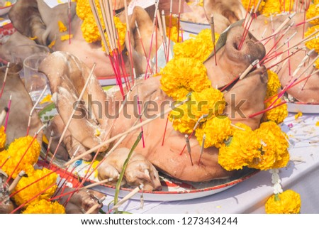 Close-up of sacrifice pigs head decorated with yellow flowers on the table for offering to the god or angel in mixed culture of Buddhist and Hindu religion in Thailand. #1273434244