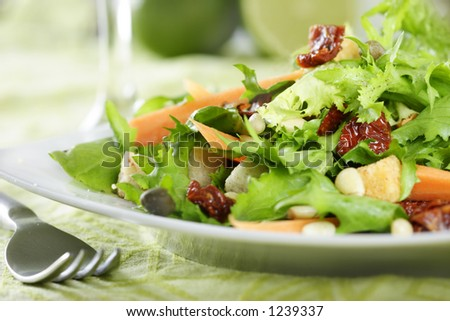 ShutterStock close-up of salad 1239337