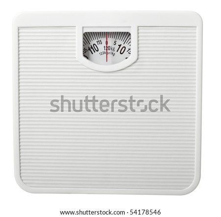 close up of scale  on white background with clipping path