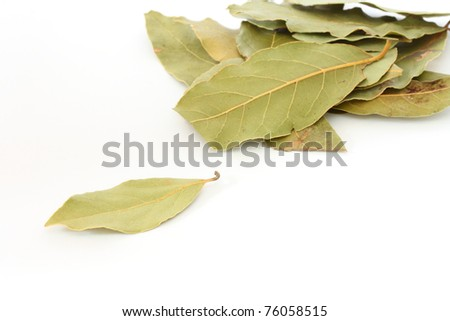 Close up of several leaves of bay leaf spice on white background