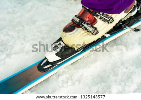 Close up of ski skier skier skier on snow white-violet color #1325143577