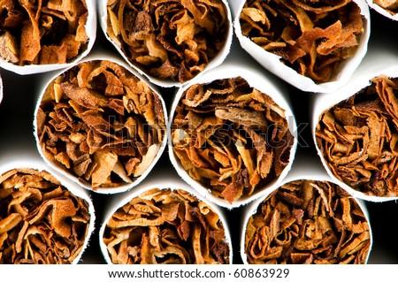 Close up of smoking cigarettes as anti smoking concept