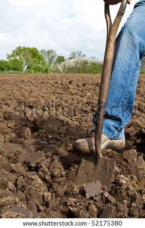 Close up of someone pushing a spade into soil with his foot in the process of digging - stock photo