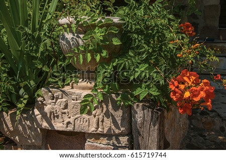 Close-up of stones and vase with shrubs and flowers, at the gorgeous medieval hamlet of Les Arcs-sur-Argens, near Draguignan. Located in the Provence region, Var department, southeastern France Photo stock ©