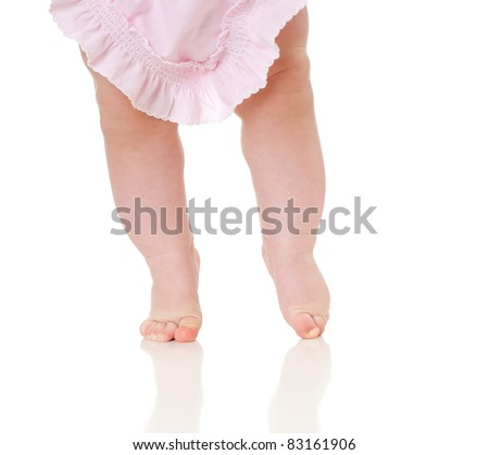 Close up of the charming small legs doing the first steps