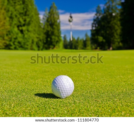 Close up of the golf ball on the ground of the course with the blurred flag behind.