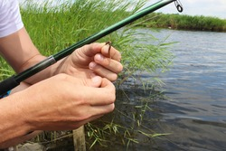Close-up of the hands of a Caucasian fisherman stringing a worm on the hook of a fishing rod. Topic: bait for catfish, carp,  bream, perch, pike perch, crucian carp, pike, sprat, bleak, silver bream
