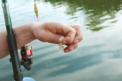 Close-up of the male hand of a fisherman, stringing maggot on the hook of a fishing rod against the backdrop of a blue river. The theme is bait for fish carp, bream, perch, crucian carp