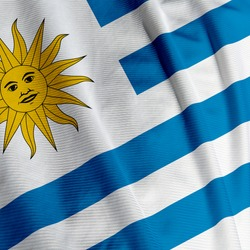 Close up of the Uruguayan flag, square image