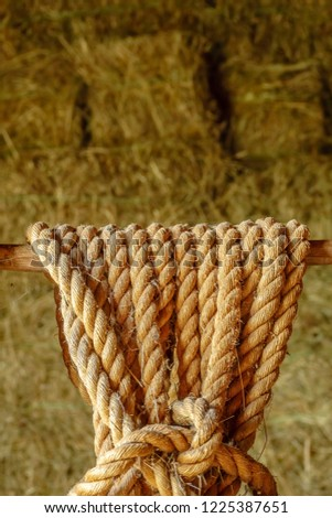 Close-up of thick rope with a knot hanging near hay bales in a barn on a farm, with natural lighting and foreground focus #1225387651