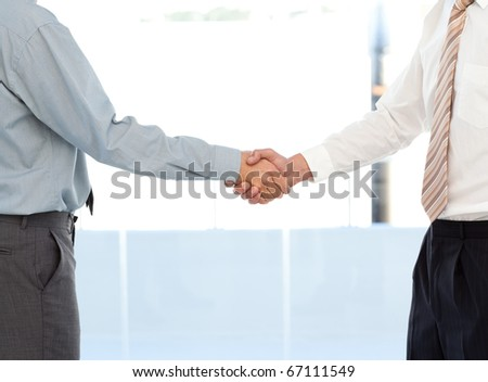 Close up of two businessmen concluding a deal by shaking their hands standing in the office