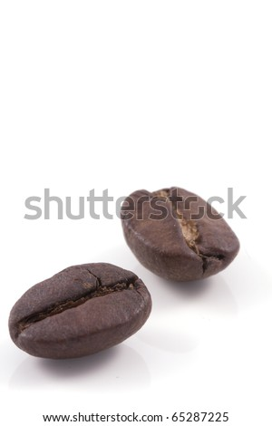 close up of two dark roasted fair trade coffee beans isolated on a white background