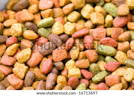 Close-up of variety type dry cat food.