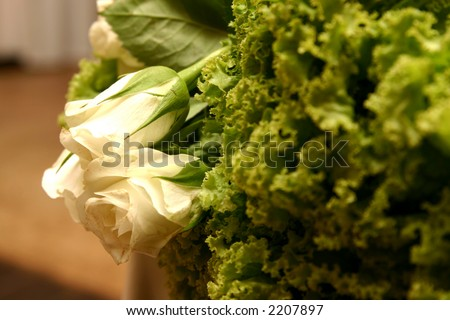 Close-up of white roses within the green lettuce at the wedding reception. Shallow depth of field - roses in focus.