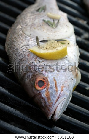 Close-up of whole grilled red snapper dressed with lemon and rosemary on the grill.