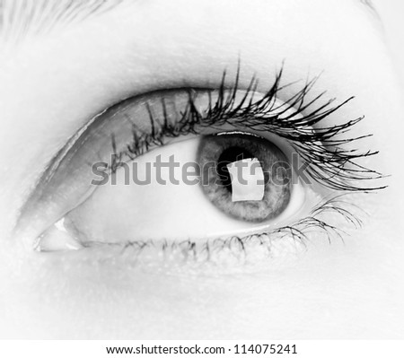 Close-up of woman eye in black and white