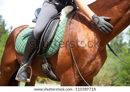 Close-up of woman rider and horse