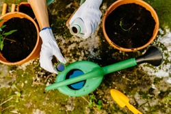 Close up of woman's hands in gloves pours liquid mineral fertilizer in watering can with water in backyard. Cultivation and caring for outdoor potted plants. Hobbies and leisure, urban jungle concept.