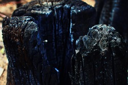 close-up, old burned  stump tree, burnt and charred to beautiful black coals with nice and sharp cracks, charred bark, looks like black rocks and mountains, covered in ashes