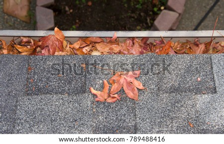 Close up on section of rain gutter on residential home, clogged with leaves. debris like leaves, twigs can clog your gutter system, causing potential harm to your house, landscaping and the gutters. Stock photo ©
