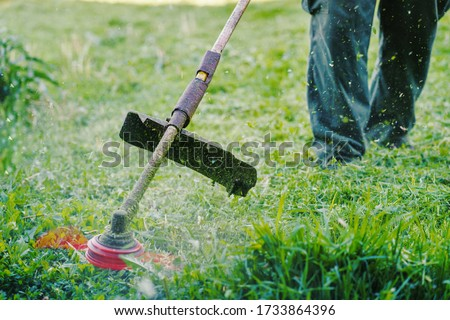 Close up on string trimmer head weed cutter petrol or electric brushcutter working in the yard or field cutting grass in garden in day low angle view Stockfoto ©