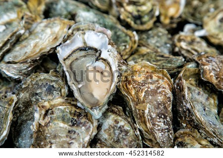 Close up oysters background with Open Oyster