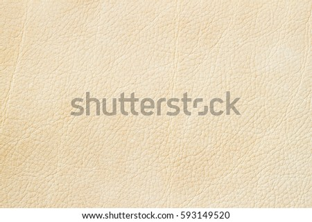 Close-up paint genuine leather, pale beige color background or texture. For backdrop, substrate, composition use. With place for your text