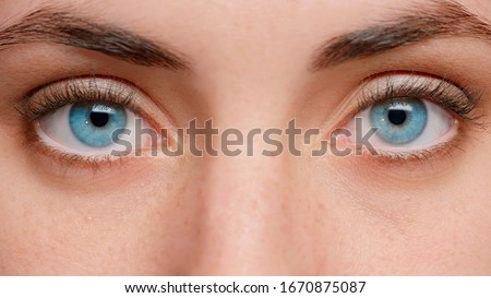 Close up photo. Blue eyes of the girl near. Clean skin and well-groomed. Beautiful eyebrows. In the eyes of reflection. Foto stock ©