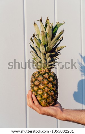 Close-up photo of male hand holding a great pineapple, against the white wall. Summer concept. #1055082281