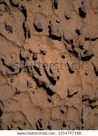 Close up photo of termite mound in outback Australia