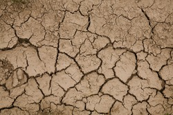 Close-up photograph of cracked earth underfoot. Natural Wallpaper, Texture, Pattern, Background.