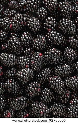 Close-up photograph of fresh, ripe blackberries