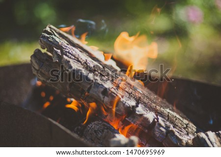 Close-up picture of a firewood with burning flame fire