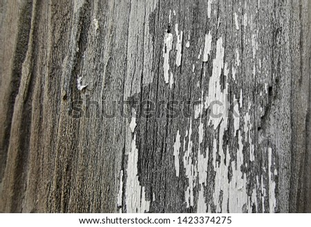 Close-up picture of a very old wooden pole