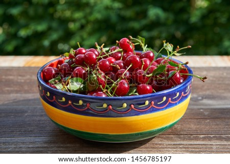 Close up picture of rustic, vintage or folkish bowl full of red riped juicy and healthy sour cherries harvested in home organic orchard or garden on the old wooden table outside with green background.