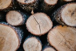 Close-up picture of wood. A pile of wood ready for fire