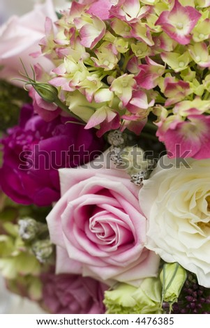 close up pink tipped hydrangeas with roses pink white and fuschia