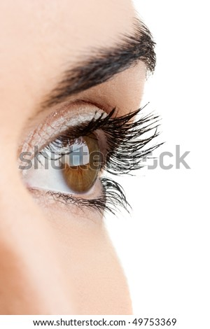 Close-up portrait of a beautiful female eye