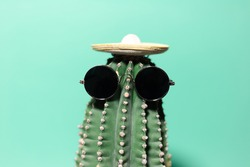 Close-up portrait of green cactus with mexican hat and sunglass, isolated on background of aqua menthe color.
