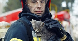 Close-up portrait of heroic fireman in protective suit and red helmet holds saved cat in his arms, second firemans is out of focus near fire engine. Firefighter in fire fighting operation
