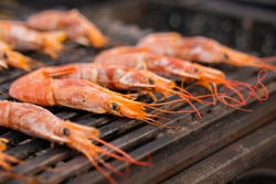 Close up - process of cooking fresh red langoustine shrimps, prawns on grill at summer local food market. Outdoor cooking, barbecue, gastronomy, seafood, cookery, street food concept